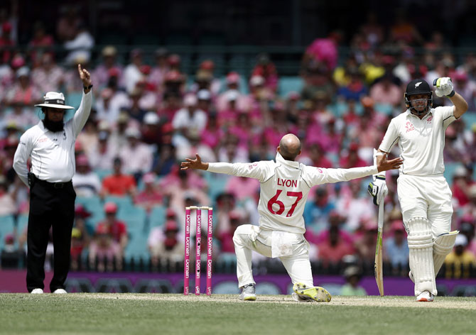 PHOTOS: Australia vs New Zealand, 3rd Test, Day 3