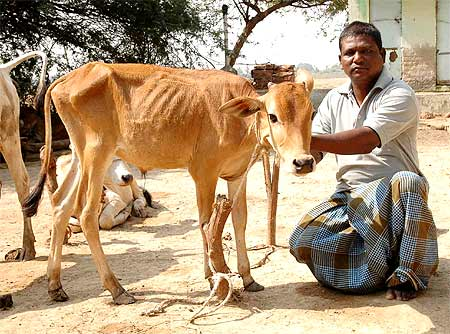 Landowners like Jayachandra Naidu have given up farming
