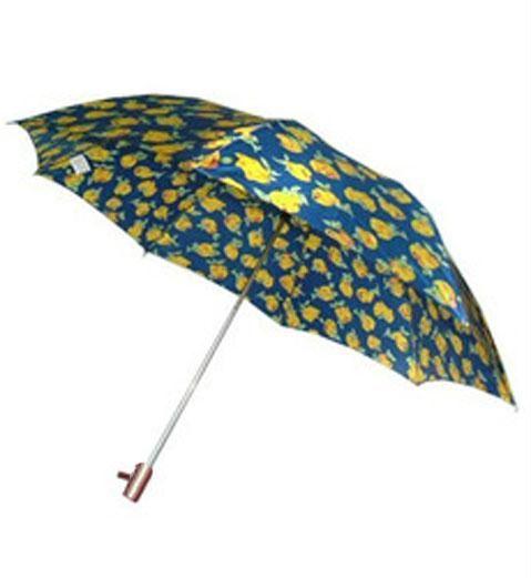 Buy Umbrellas For Summer