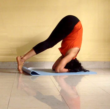 yoga poses to get you in shape  rediff getahead