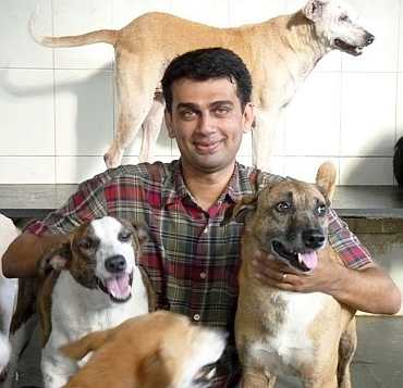 The Welfare of Stray Dogs CEO Abodh Aras with stray dogs