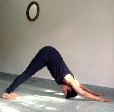 pix five yoga poses for correcting your posture  rediff