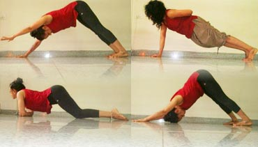 pix 5 yoga poses for sexy and toned arms  rediff getahead