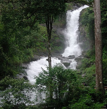 Coorg is a nature lover's paradise