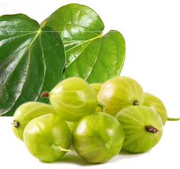 Apply a mixture of ground betel leaves and gooseberry