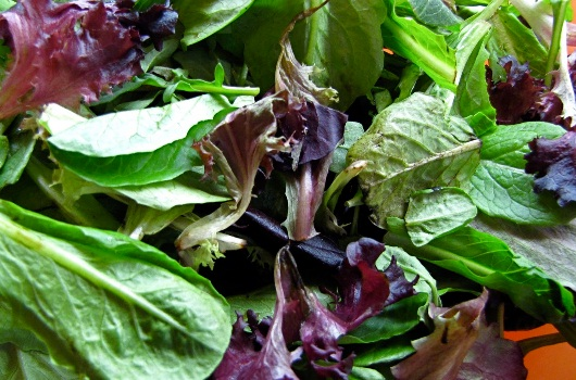 Taking B vitamins will keep your memory sharp, so eat lots of folate-rich greens