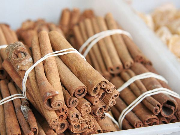 Cinnamon not only has anti-inflammatory properties, it also regulates metabolic rate and reduces bacterial growth in food.