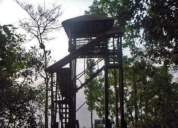 Forest Watch Tower in Pilibhit Forest Range