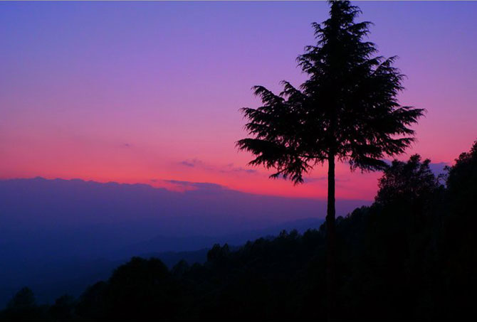 Late evening in Binsar