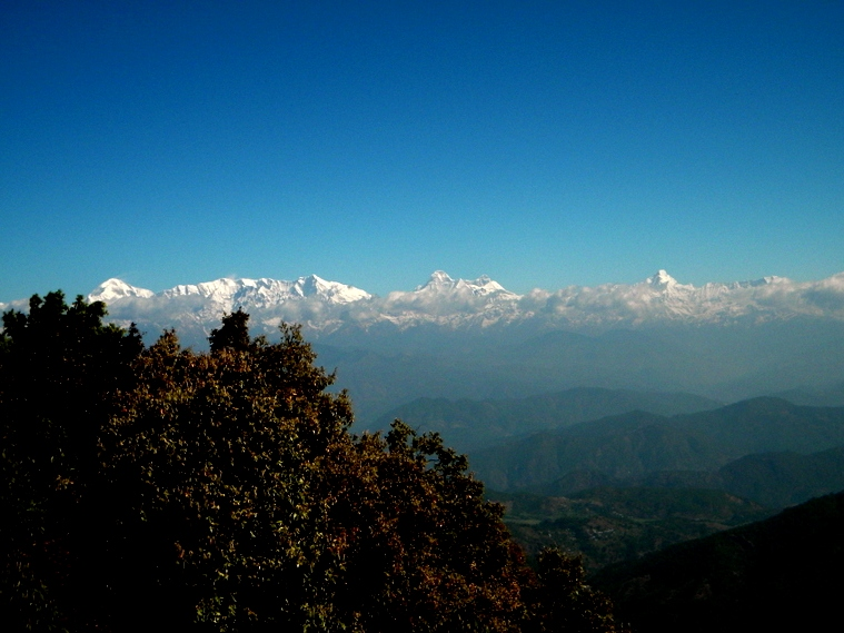 The Himalayas, as seen from Binsar in Uttarakhand