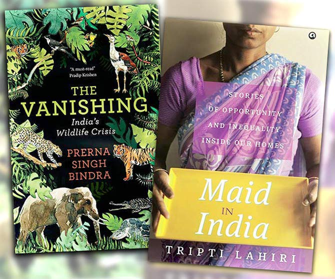 Books: The Vanishing and Maid In India