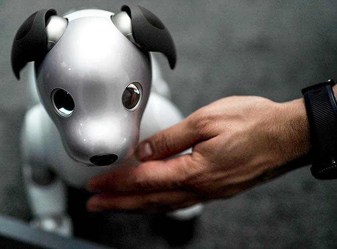 Beyond erotic dancer robots: The 10 best robots of CES