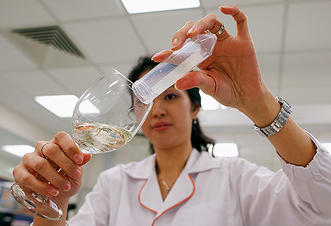 A food scientist examines a sample of wine in the laboratory