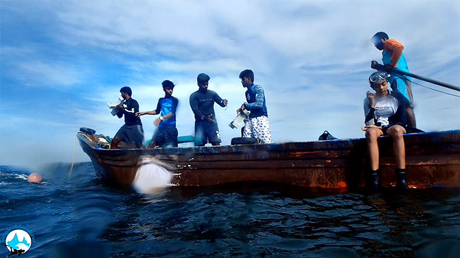 Members from Temple Adventures, a team of divers, help Siddharth drop the cement blocks into the sea.