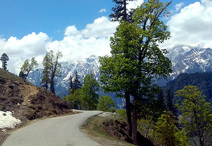 Travel pix: Why you must visit Himachal in the summer