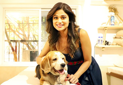 Adorable! Shamita visits a pet spa in Mumbai