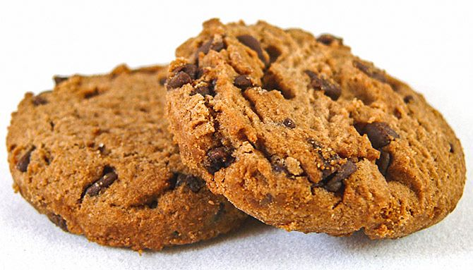 Chocolate and peanut butter oatmeal cookie