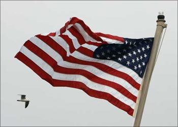 An American flag flutters in the wind as a bird flies past.
