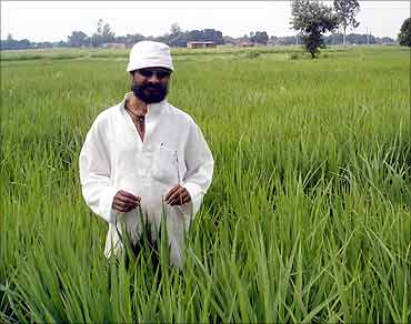 Prakash Singh in his field.