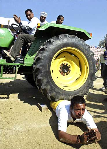 A participant performs a stunt where a tractor is driven over him near Ludhiana.