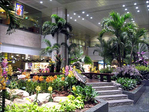 Changi International Airport.