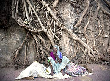 A homeless woman sits in front of the dried roots of a banyan tree.