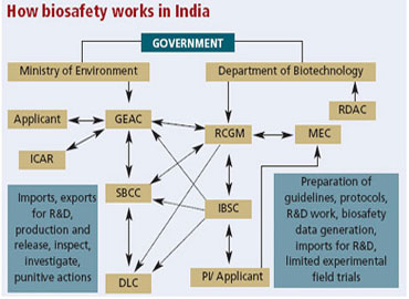 How biosafety works in India.