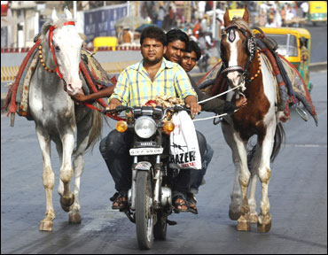 Horse owners ride on a motorbike as they pull their horses along a road in Ahmedabad.