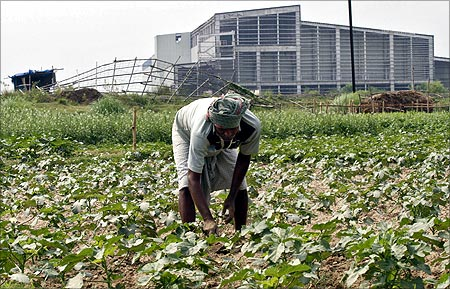 A farmer works a crop next to the closed Tata Motors Nano car factory in Singur, north of Kolkata.