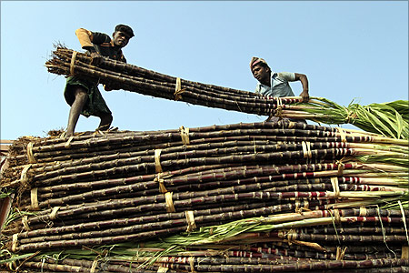 Workers unload sugarcane from a truck at a wholesale fruit market in Chennai.