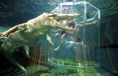 A tourist dives in a cage partially immersed in a crocodile pen in Crocosaurus Cove in Darwin