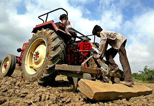 Farmers plough their field in Sanand village in Ahmedabad.