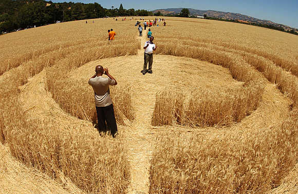 A man takes of photo of another man who is standing inside one of a number of crop circles in a wheat field near the town of Fairfield in California.