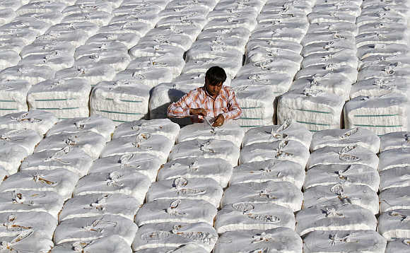 A trader checks stacked boxes of cotton before loading on to a truck inside a cotton processing unit at Kadi town, about 56km north of Ahmedabad.