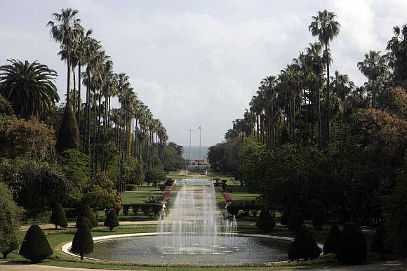 A view of the Jardin Essai botanical garden at Hamma in Algiers, Algeria.
