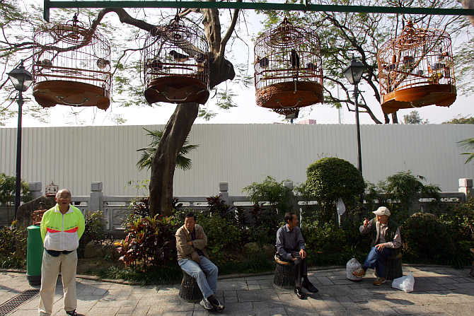 Residents rest at Bird Street Garden, a market catering to bird lovers, in Hong Kong.