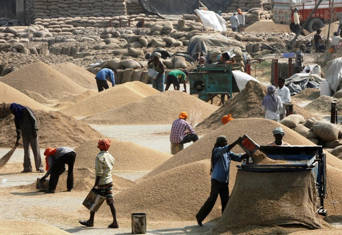 Labourers remove dust from paddy crop at a wholesale grain market in Chandigarh.