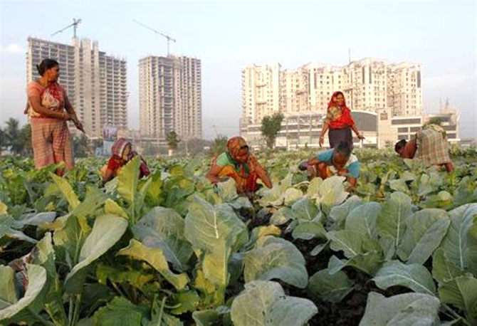 Agriculture grew at 3.6 per cent in Q3. UPA will have to go to the polls with a sub-5 per cent growth rate.