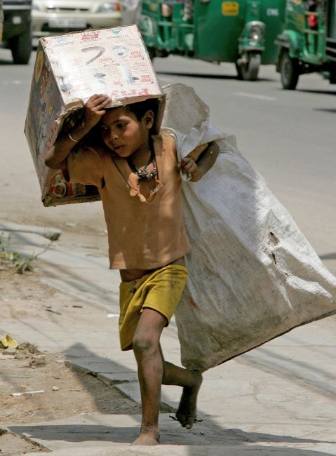 A child picks old cartons for a living.