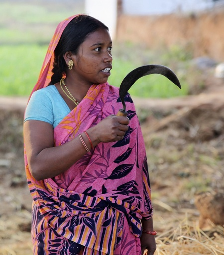 Anita Kushwaha, 24, cuts fodder for her cattle in Budher village in Singrauli district in Madhya Pradesh.