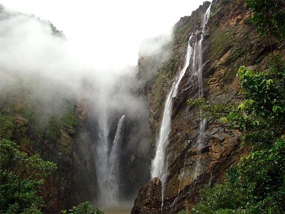 The Western Ghats mountain chain is recognised as one of the world's eight hottest hotspots of biological diversity.