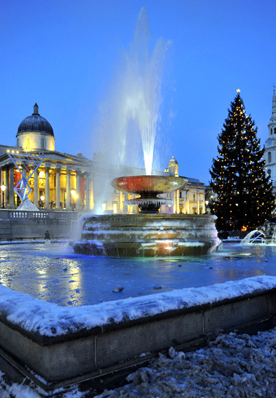 The Norwegian Christmas tree is seen illuminated in Trafalgar Square in London.