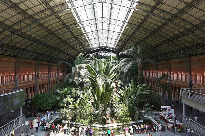 A display of tropical plants fills Atocha central station.