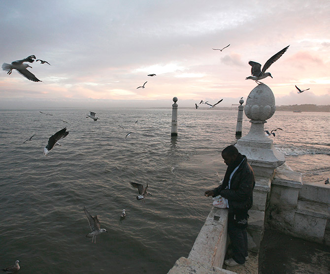 A man feeds seagulls at the 'Cais das Colunas', in front of the Tagus River in Lisbon.