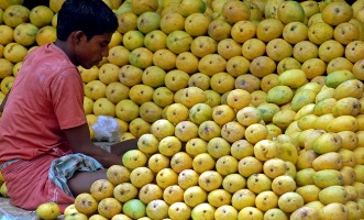 A hawker arranges mangoes at a roadside shop in Chennai.