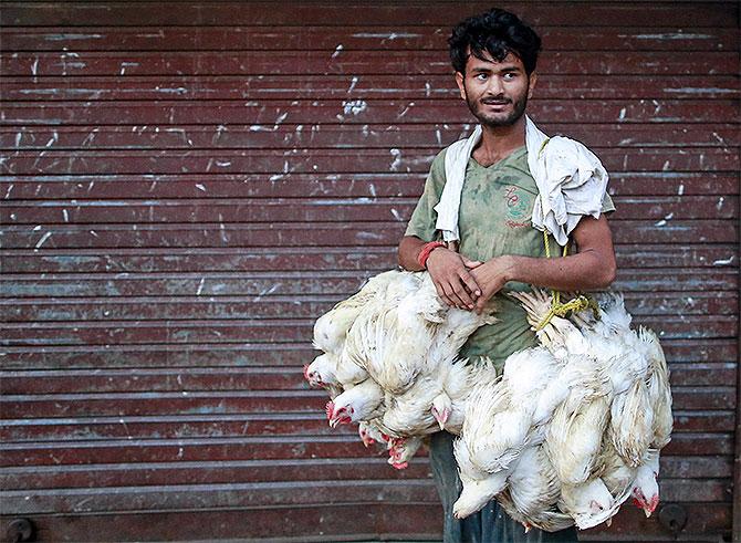 Poultry prices decline amid coronavirus rumours