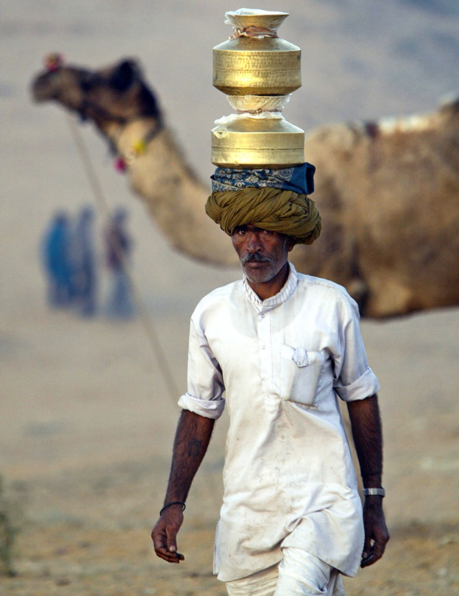 A Rajasthani milkman brings milk at the Pushkar fair, Rajasthan, November 15, 2005. Photograph: Kamal Kishore/Reuters