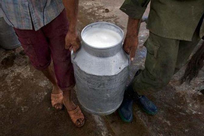 As lockdown eases, demand for milk rises