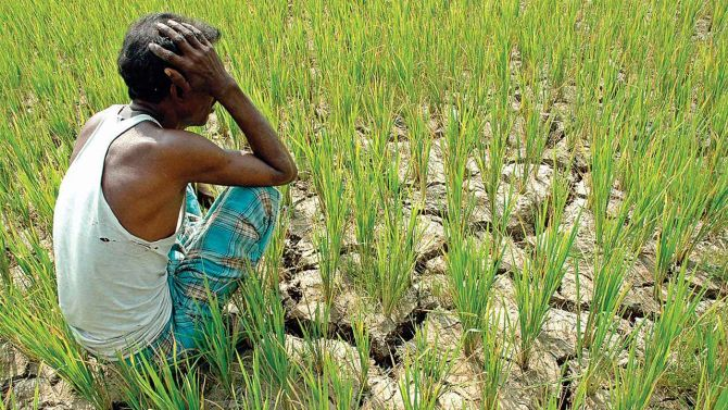 In defence of farm loan waivers
