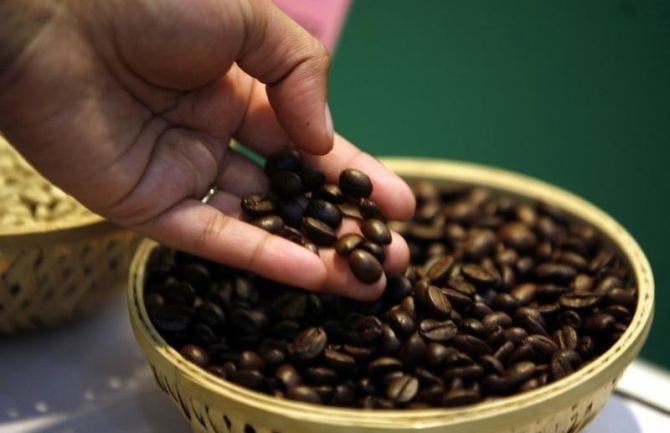 Calamities wreak havoc on spices & coffee plantations